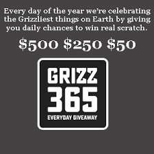Grizzly Grizz365 Instant Win Game