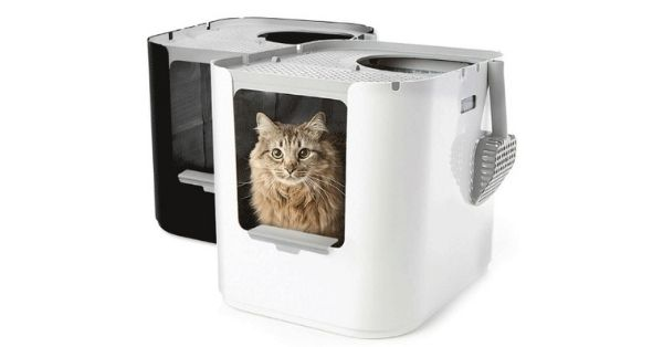Modkat Love Your Litter Box Giveaway